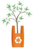 Reciclando el bolso con el árbol adentro Foto de archivo libre de regalías