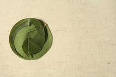 Reciclando el símbolo hecho de las hojas, el punto verde. Foto de archivo libre de regalías