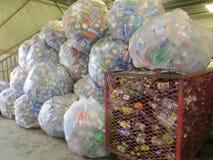 Reciclando las latas en las bolsas de plástico en una descarga o el reciclaje del centro Imagen de archivo