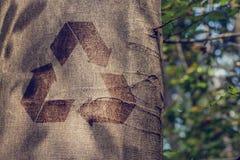 Reciclando o símbolo no tronco de uma árvore fotos de stock