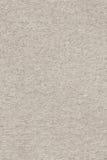 Recicle la textura beige de papel del Grunge del grano grueso Foto de archivo