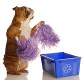 Recicle por favor Imágenes de archivo libres de regalías
