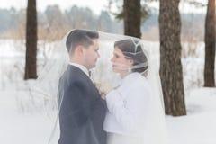 Recienes casados de los pares que caminan en un bosque del invierno Imagenes de archivo