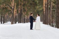Recienes casados de los pares que caminan en un bosque del invierno Imágenes de archivo libres de regalías
