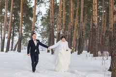 Recienes casados de los pares que caminan en un bosque del invierno Fotos de archivo