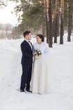 Recienes casados de los pares que caminan en un bosque del invierno Fotos de archivo libres de regalías
