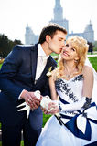 Recienes casados del beso con las palomas en la caminata de la boda. Imagen de archivo libre de regalías