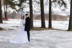 Recienes casados jovenes de los pares que caminan en un bosque del invierno en la nieve Fotos de archivo libres de regalías