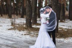 Recienes casados jovenes de los pares que caminan en un bosque del invierno en la nieve Fotografía de archivo libre de regalías