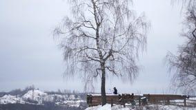 Recienes casados jovenes que caminan afuera La novia y el novio caminan juntos en el parque en invierno o verano y las manos sost Fotografía de archivo libre de regalías