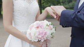 Recienes casados jovenes que caminan afuera La novia y el novio caminan juntos en el parque en invierno o verano y las manos sost Imagen de archivo libre de regalías