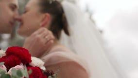 Recienes casados novio y beso y movimiento del abrazo de la novia en bosque imperecedero nevoso durante las nevadas en la cámara  metrajes