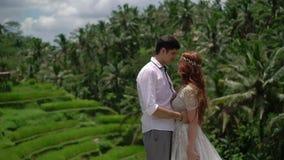Recienes casados que presentan en la terraza del arroz en Bali Llevar a cabo las manos, abrazando Boda rom?ntica almacen de metraje de vídeo