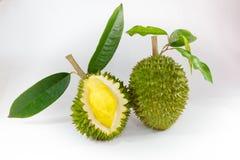 Recientemente fruta del durian Fotografía de archivo libre de regalías