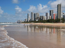 Recife Stock Photos