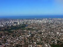 Recife Immagine Stock