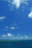Recife coral Fotografia de Stock