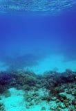 Recife coral e areia subaquáticos Imagens de Stock