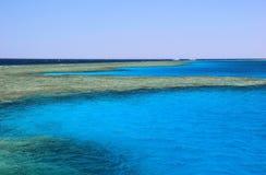 Recife coral no Mar Vermelho, Egipto. Fotografia de Stock Royalty Free