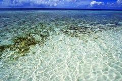 Recife de corais de Maldivas foto de stock
