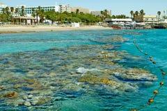 Recife de corais no Mar Vermelho Eilat imagens de stock royalty free