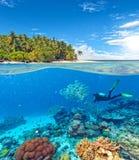 Recife de corais subaquático com mergulhador de mergulhador foto de stock royalty free