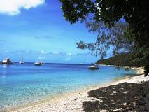 Recife de coral da ilha de Fitzroy grande imagens de stock