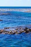 Recife exposto na maré baixa fotos de stock royalty free