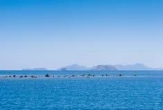 Recife rochoso revelado na maré baixa Fotos de Stock