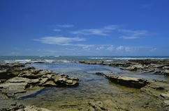 Recifes de коралл отсутствие na Бахи Atlântico стоковая фотография