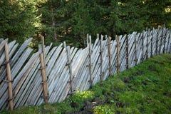 Recinti dentro una foresta tipica delle alpi italiane Fotografie Stock