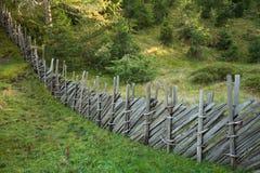 Recinti dentro una foresta tipica delle alpi italiane Fotografie Stock Libere da Diritti