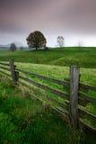 Recinti il pascolo con gli alberi, il tempo della pioggia, Svizzera della Boemia, repubblica Ceca Fotografia Stock Libera da Diritti