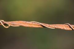 Recinto arrugginito del filo spinato fotografia stock