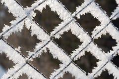 Recinto arrugginito della rete metallica coperto di brina nell'inverno Fotografia Stock Libera da Diritti