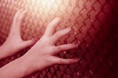 Recinto d'acciaio della gabbia della tenuta della mano della ragazza del bambino del primo piano immagine stock