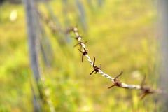 Recinto del filo spinato Fotografia Stock Libera da Diritti