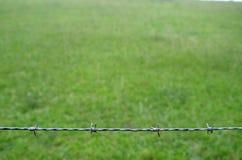 Recinto del filo spinato in basso dell'immagine Fotografia Stock Libera da Diritti