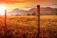 Recinto del filo spinato ed e cielo di tramonto sopra il campo dell'azienda agricola Fotografie Stock Libere da Diritti