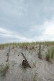 Recinto della tempesta della spiaggia della costa Est che protegge le dune di sabbia alte Fotografie Stock