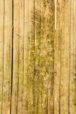 Recinto di bambù immagine stock libera da diritti