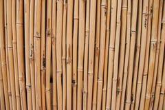 Recinto di bambù asciutto Fotografia Stock Libera da Diritti