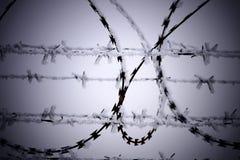 Recinto di filo metallico di Barb al giorno di inverno freddo immagini stock libere da diritti