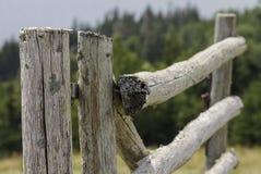 Recinto di legno rustico Fotografia Stock