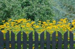 Recinto e fiori di legno Fotografia Stock Libera da Diritti