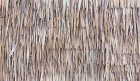 Recinto fatto delle foglie di palma secche del Nipa Fotografie Stock Libere da Diritti