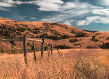 Recinto Landscape del bestiame Fotografia Stock