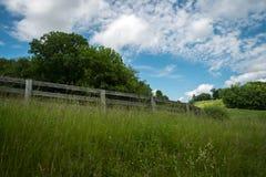 Recinto Overgrown dell'azienda agricola fotografia stock