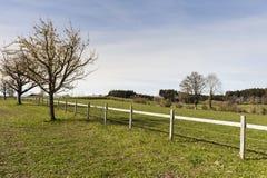 Recinto per bestiame recintato per il bestiame fotografie stock libere da diritti