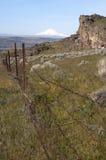 Recinto pungente Rocky Ridge Sage Brush Mount Hood della composizione verticale immagine stock